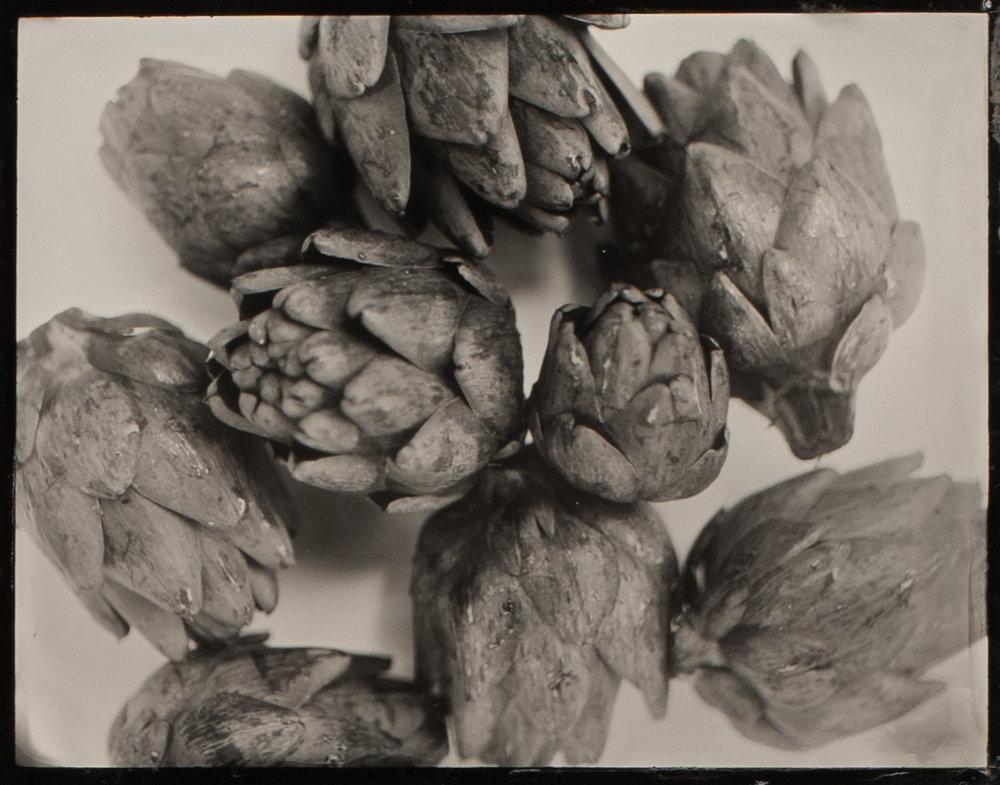 artichoke II.jpg