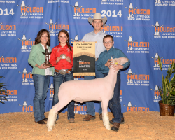 2014 Champion Finewool at Houston    Shown by Miles Mathis
