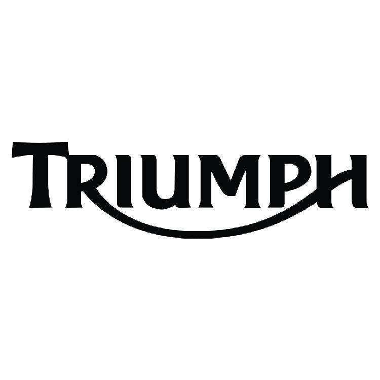 Triumph Marketing Merchandiser