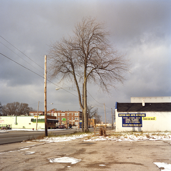 saginaw one tree.jpg