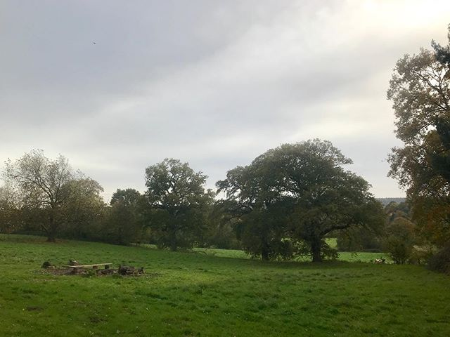 Our #bonfire is almost ready for the #Samhain and #halloween #ghost #story #celebration #tonight in the #English #countryside #native #land of #thomashardy #filmsadaptedfrombooks #filmadaptationsofbooks #filmsinspiredbynature #film #indiefilm #independentfilm #thereturnofthenative #themistovertale