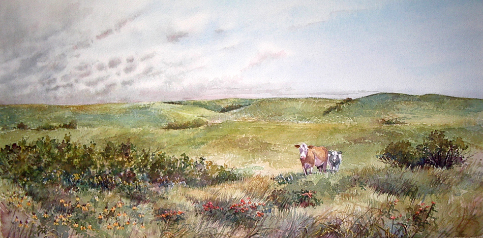 Cows, Clouds, Coneflowers  10x20 wc $650