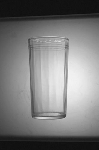Sudek's Glass 28x18 photograph on canvas $400