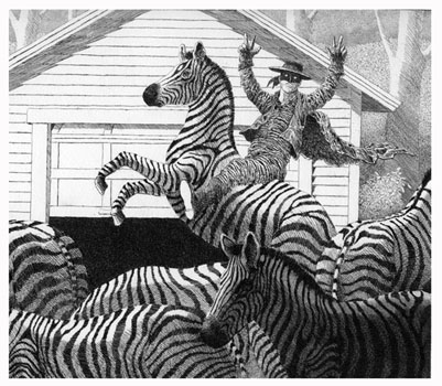 Z is for Zorro and his Zebras  8x9  etching $275