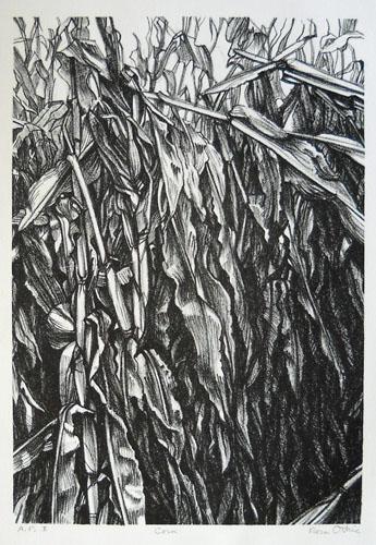 Corn I 11x8 Lithograph 7of20 $310 fr