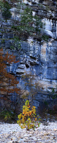 Scroll-Buffalo River