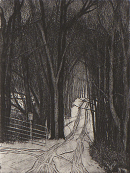 The Uneven Road  8x6  etching  $275 fr