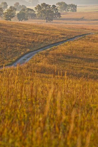 Fall Sunrise, Fox Creek Valley Trail-(FH51)