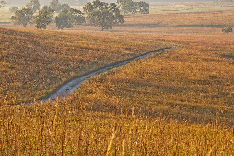 Fall Sunrise, Fox Creek Valley Trail-(FH52)