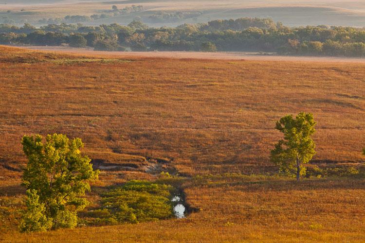Fall Sunrise, Fox Creek Valley, Tallgrass Prairie-(FH50)