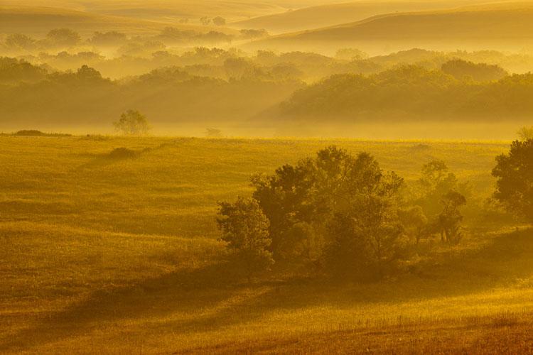 Fall Sunrise, Fox Creek Valley, Tallgrass Prairie-(FH53)