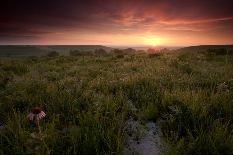 Flint Hills, Summer Sunrise-(FH62)