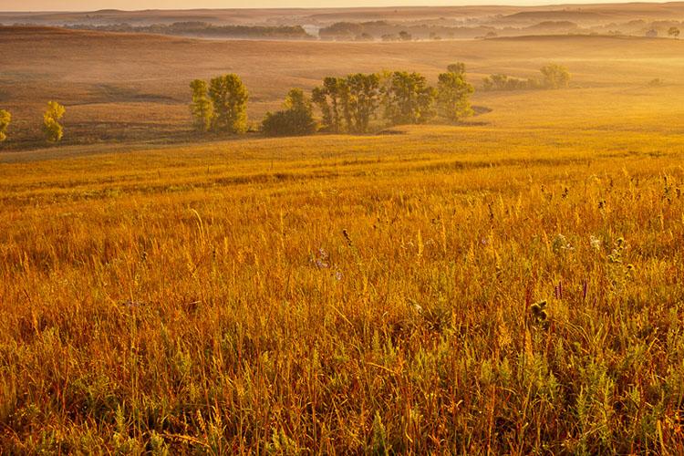 Fox Creek Valley, Fall sunrise-(FH40)