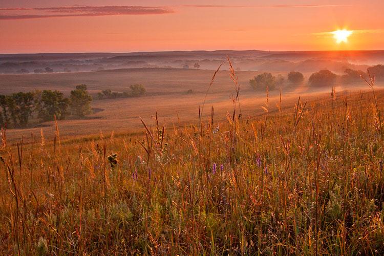 Fox Creek Valley, Fall sunrise-(FH41)