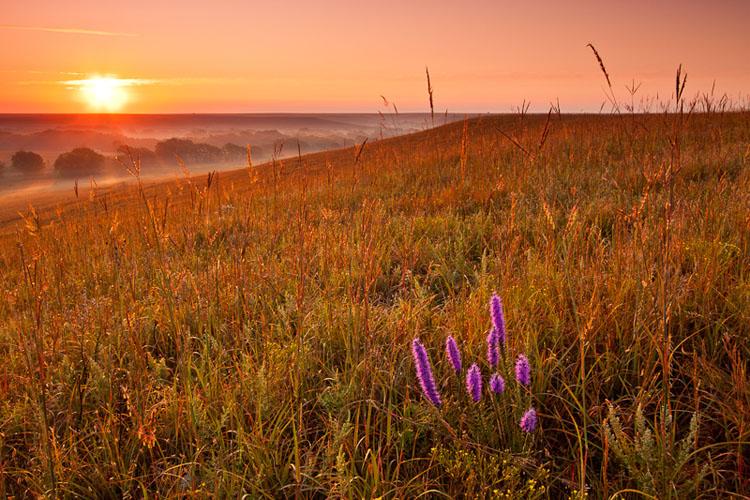 Fox Creek Valley, Fall sunrise-(FH42)