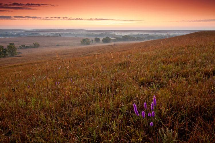 Fox Creek Valley, Fall sunrise-(FH44)