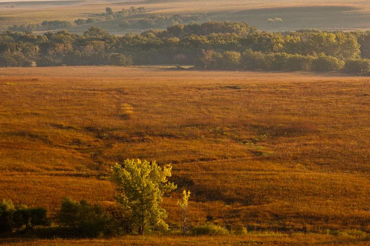 Fox Creek Valley, Tallgrass Prairie National Preserve, Fall Sunrise-(FH45)
