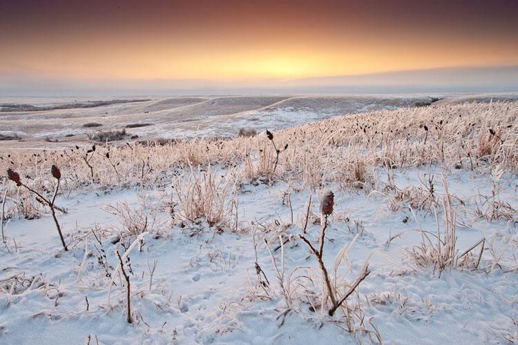 Ice Storm, Flint Hills-(FH79)