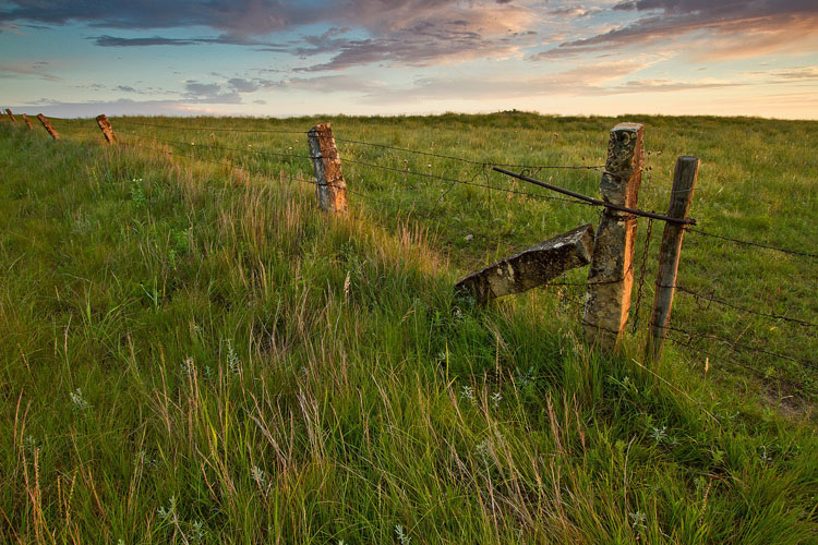 Post Rock Fence, Lincoln County-(KL39)