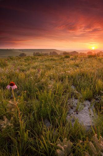 Flint Hills, Summer Sunrise-(FH61)
