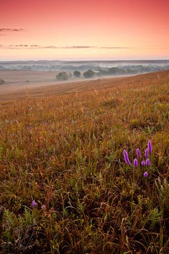 Fox Creek Valley, Fall sunrise-(FH43)