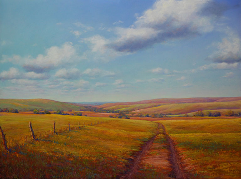 Jean Terry  Fence Line Track  18 x 24  Pastel  $975  fr