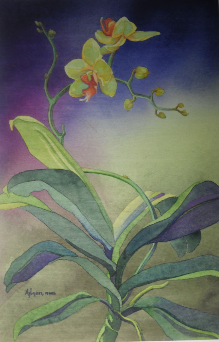 Judy Wareham Lyon Yellow Orchid 18x12 wc $475 fr
