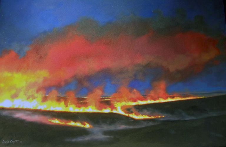 Louis Copt Big Burn Hwy 56 Near Council Grove 12x48 oc $3,650 fr