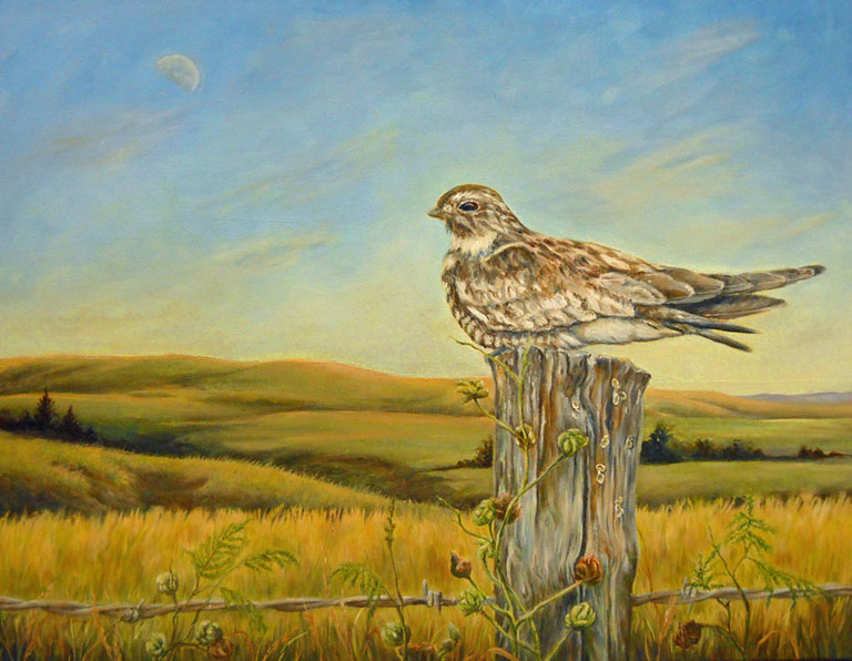 Susan Rose  Night hawk and Day Moon  22x28  ac  $925  uf