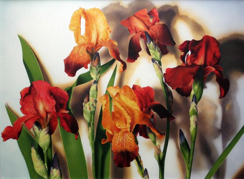 Iris 36x48 ac $5,500**