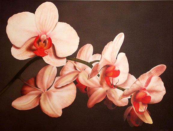 Orchids 36x48 ac $5,500**