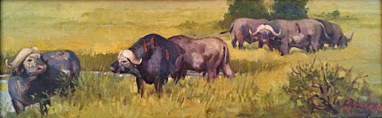 It's a Cape Buffalo 8x24 ob $750 fr