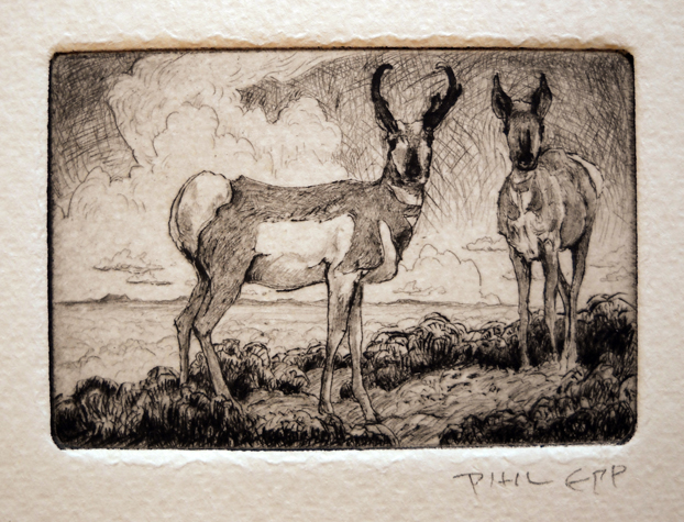 Antelope  2x3  etching  SOLD