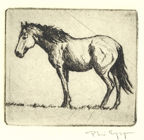 Mustang  6x9  intaglio  $245 fr
