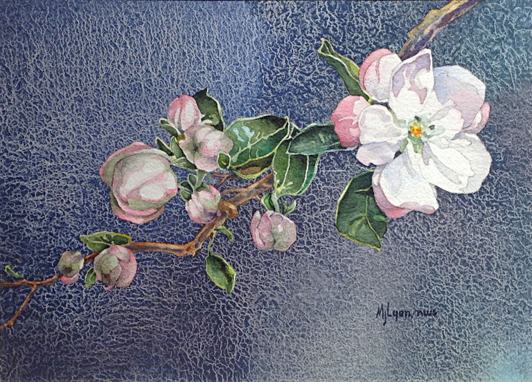Apple Blossom 9x12.5 wc $360 fr