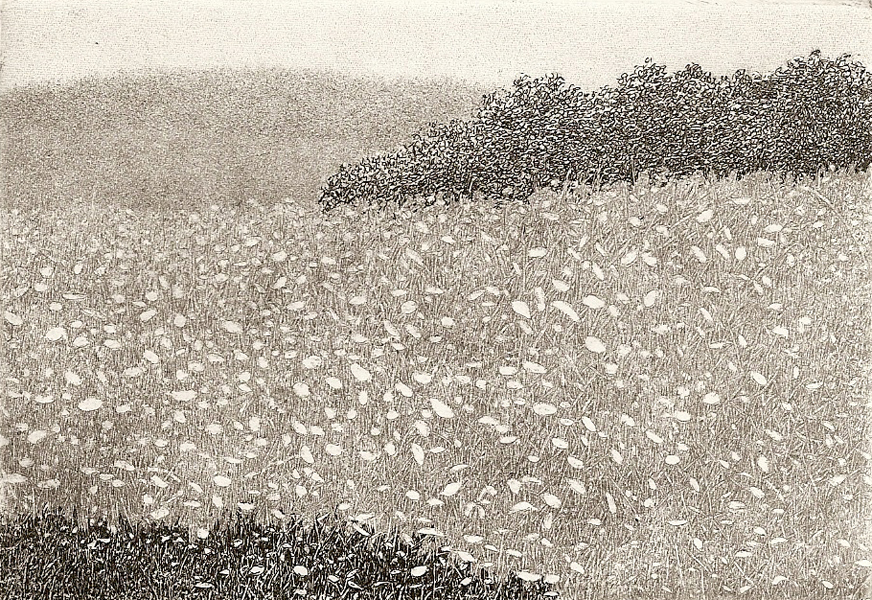 Grey Day  intaglio etching   3.25x4.5   $125(uf)  $200(fr)
