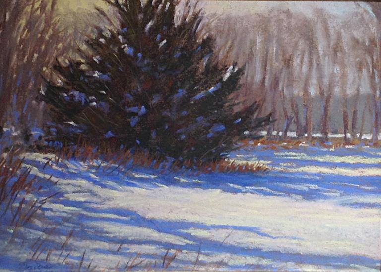 Winter Shadows 9x12 pastel $375 fr