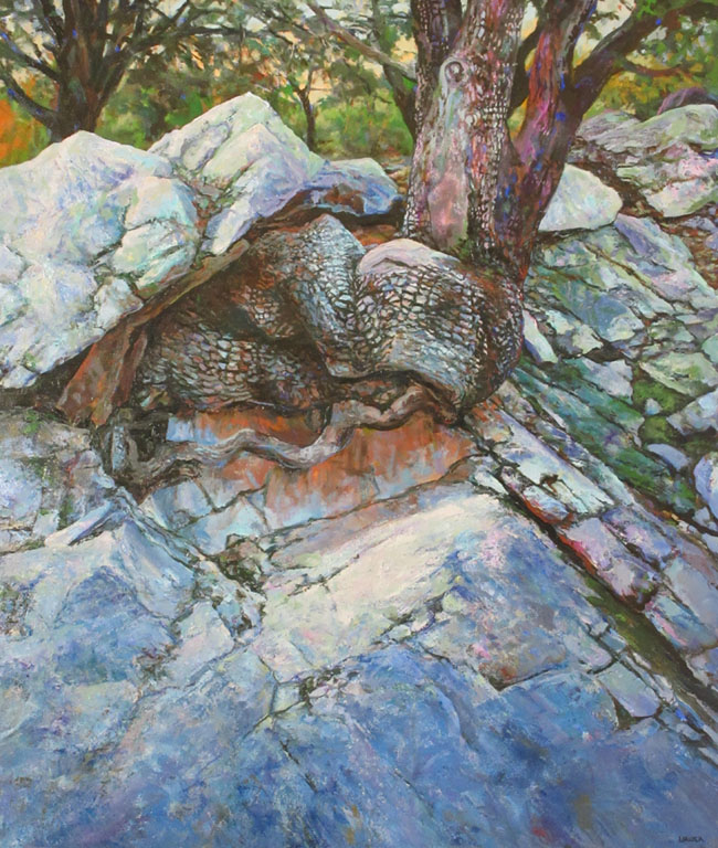 Hanging On, Madera Canyon #1  40x34  oc  $3,400