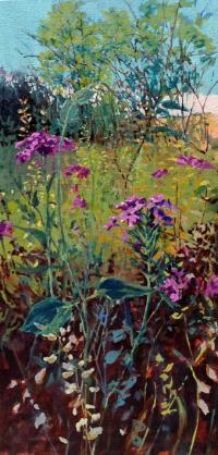 Diana Werts