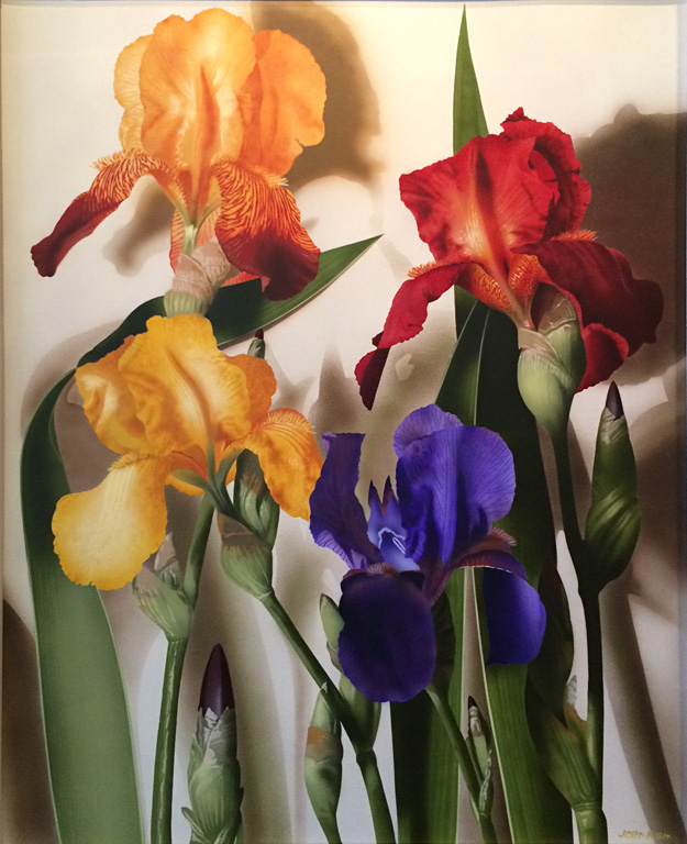 Irises 40x32 ac $4,500 fr**