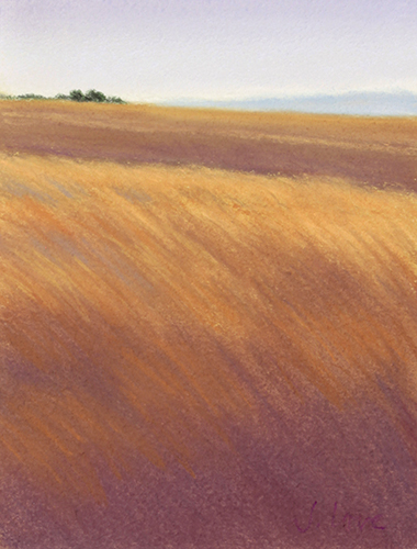 Amber Waves 7x6 pastel $100 uf.jpg