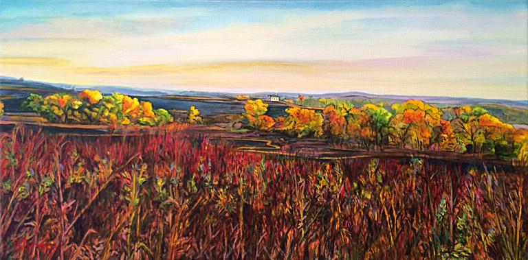 Path Through the Prairie (Tallgrass Prairie Preserve) 10x20 ac $550