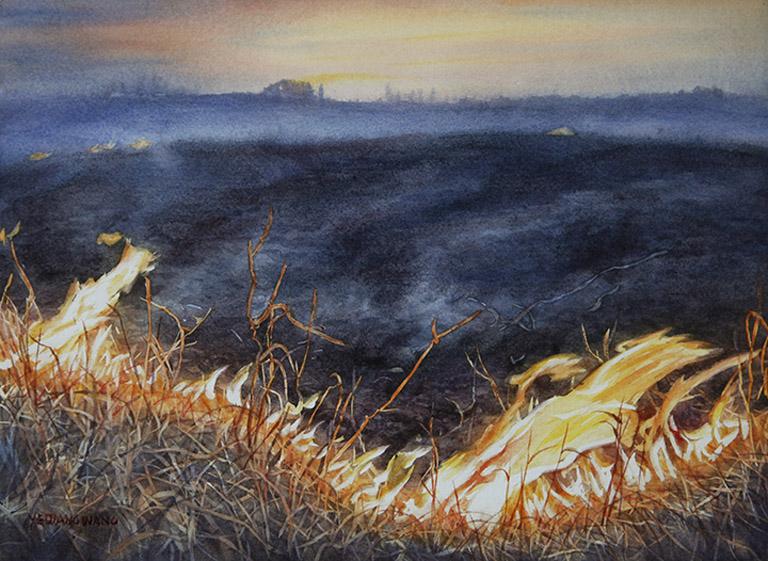 Burning at Sunset 11x15 wc $450 fr