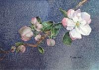 Judy Wareham Lyon