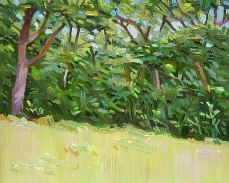 Trees Behind Studio 8x10 oc $200 fr
