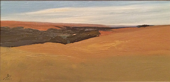 Land and Sky Country  12x24  oc  $1,800 fr