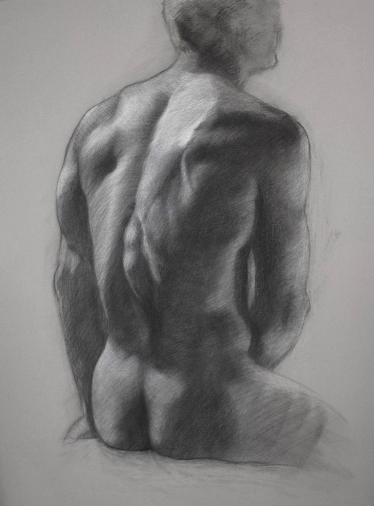 Dan's Back  20x15.5  charcoal  SOLD