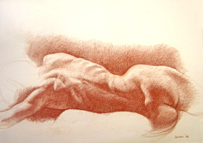 Drawing 2 - 20x27 pastel $800 fr