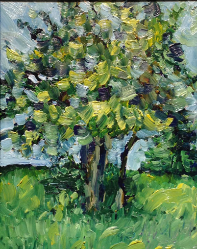 Lake Tree  10x8  op  $425 fr
