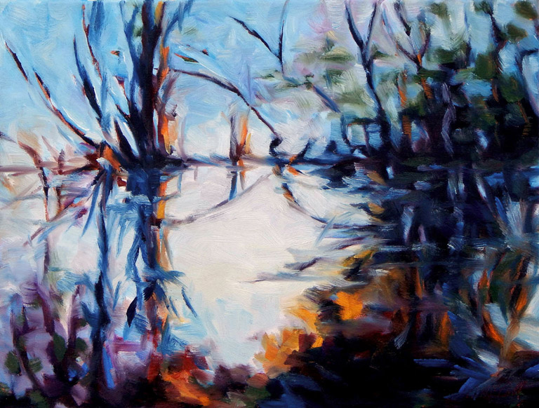 Pond Reflections  12x16  oc  $600 fr